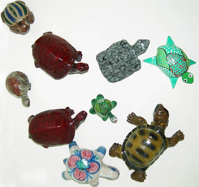 Andonio la pagina della tartaruga for Oggetti per tartarughe